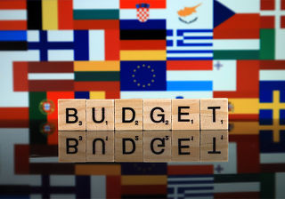 Central Europe in the European Budgetary Politics: